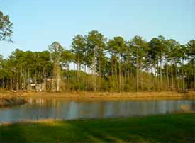 Collins Creek Landing Lots